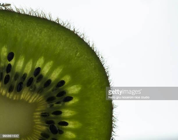 kiwi - nello stock pictures, royalty-free photos & images