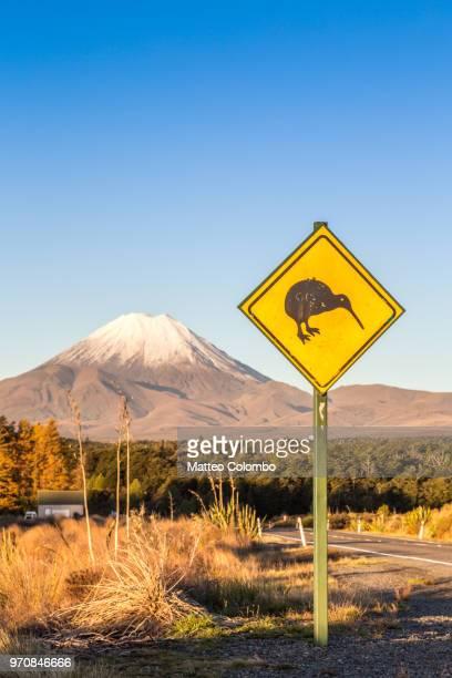 kiwi sign on the road to mt ngauruhoe, tongariro, new zealand - kiwi bird ストックフォトと画像