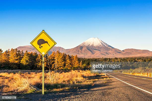 Kiwi sign on the road to Tongariro, New Zealand