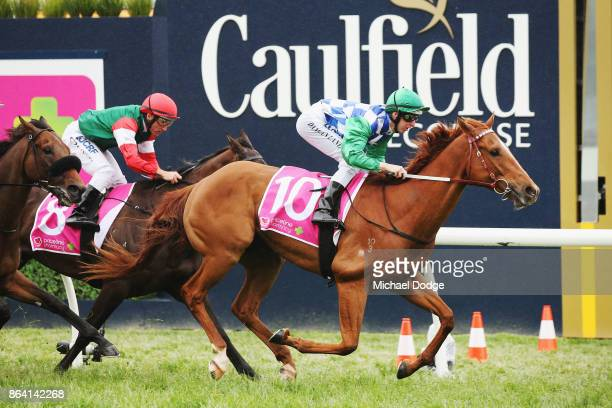 Kiwia ridden by Damian Lane wins race 5 the Priceline Pharmacy Coongy Cup during Melbourne Racing at Caulfield Racecourse on October 21 2017 in...