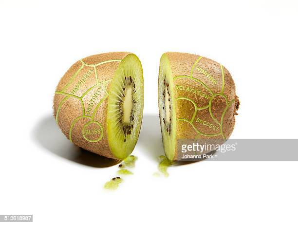 Kiwifruit divided into phrenology / brain sections