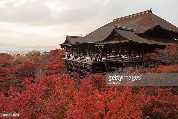 kiyomizu-dera temple in japan - kiyomizu dera temple stock photos and pictures