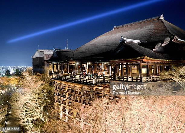 Kiyomizudera Temple is illuminated during the test lighting ahead of the special night illumination during the cherry blossom season on March 28 2014...