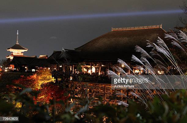 Kiyomizudera Temple is lit up while being surrounded by the autumn leaves November 25 2006 in Kyoto Japan