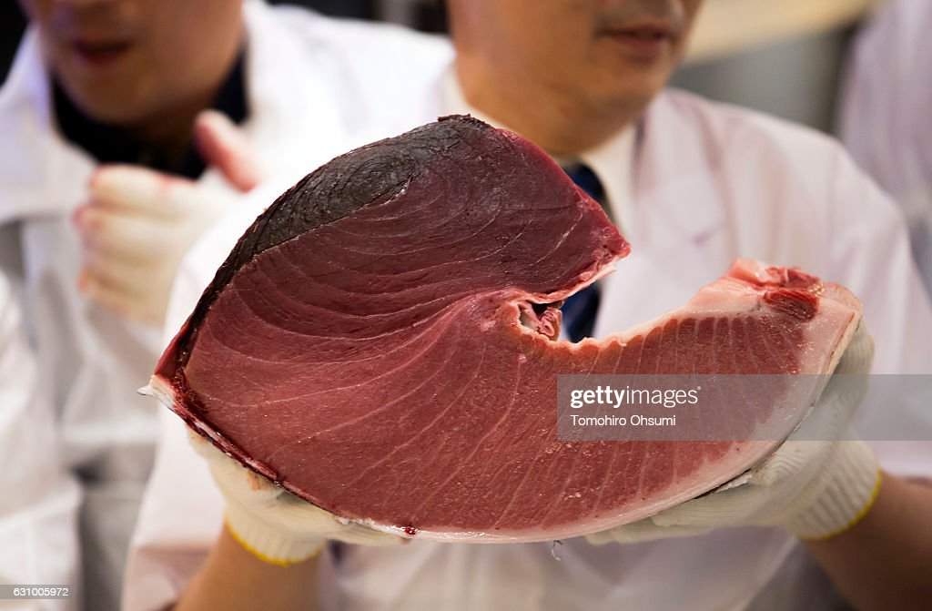 A Kiyomura Co. sushi chef holds a portion of a fresh bluefin tuna inside one of the company's Sushi Zanmai sushi restaurants after the year's first auction at Tsukiji Market on January 5, 2017 in Tokyo, Japan. Kiyomura Co. bid the highest priced tuna weighing 212 kilogram (467.38 pound) for 74.2 million yen ($637,155) at the year's first auction.