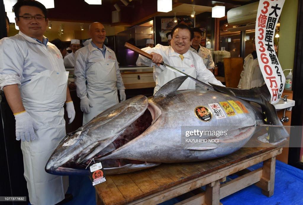 JAPAN-LIFESTYLE-FISHING-AUCTION-FOOD-TUNA : News Photo