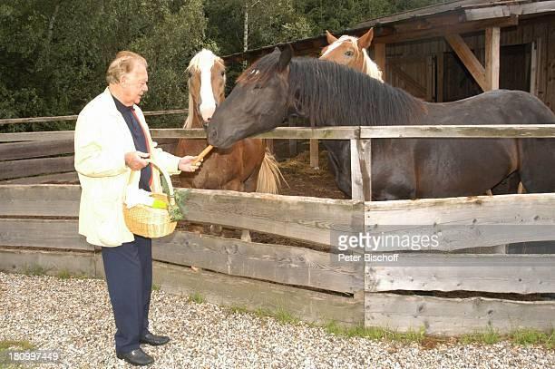 Klausjürgen Wussow Pferde ARDMagazin Brisant Salzburg/ sterreich Tierheim Gut Aiderbichl Schauspieler Tierschützer Tier Pferdefutter füttern Mohrrübe...