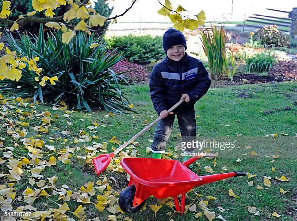 Kleiner Junge bei herbstlichem Gartenspass recht Herbstlaub zusammen