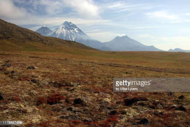 klyuchevskoy, kamen and bezymianny volcanoes across the high tundra - tundra stock pictures, royalty-free photos & images