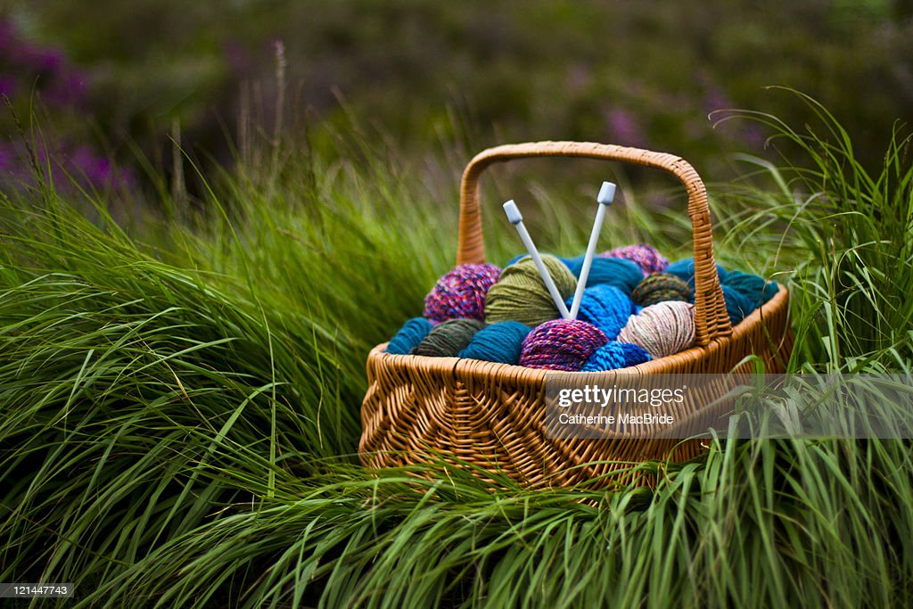 Knitting natures colours : Stock Photo