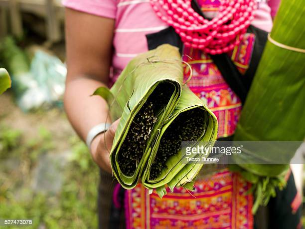 A Ko Pala ethnic minority woman sells wild fern shoots wrapped in banana leaves at Pak Nam Noi market Phongsaly province Lao PDR The small town of...