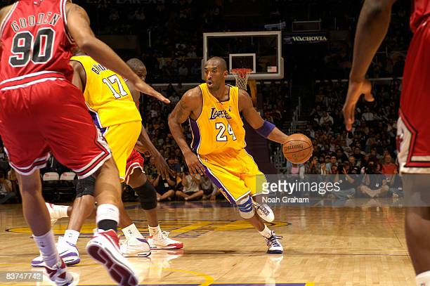 Kobe Bryant of the Los Angeles Lakers dribbles the ball against the Chicago Bulls at Staples Center on November 18 2008 in Los Angeles California...