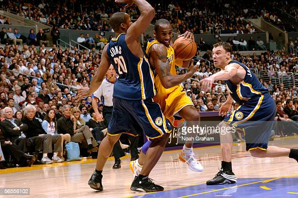 Kobe Bryant of the Los Angeles Lakers drives to the hoop against Fred Jones and Sarunas Jasikevicius of the Indiana Pacers on January 9 2006 at...