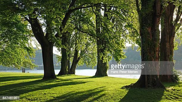 Koblenz, Kaiserin-Augusta-Anlagen, Rhine