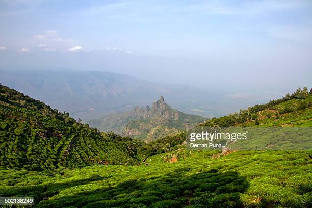 kodanad view point. - tamil nadu stock pictures, royalty-free photos & images
