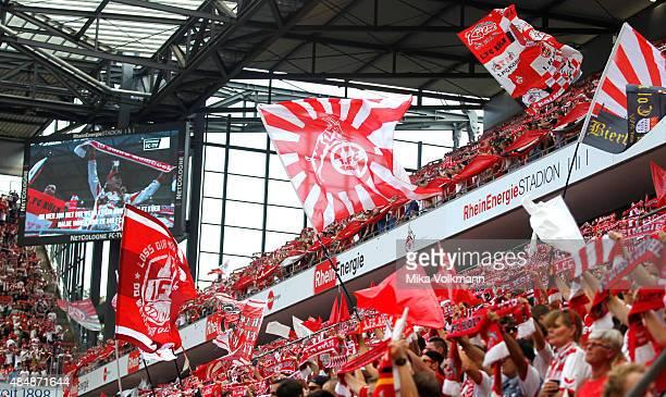 Koeln fans wave their flags during the Bundesliga match between 1 FC Koeln and VfL Wolfsburg at RheinEnergieStadion on August 22 2015 in Cologne...