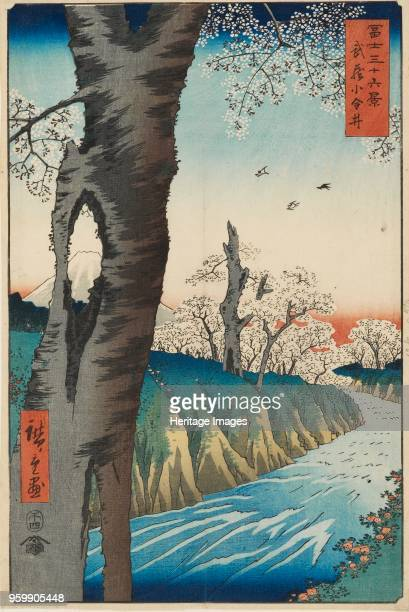 Koganei in Musashi Province designed 1858 published 18581859 Dimensions height x width mount 559 x 406 cmheight x width sheet 345 x 233 cmheight x...