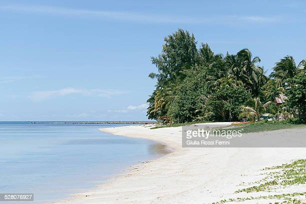 Koh Samui's beach
