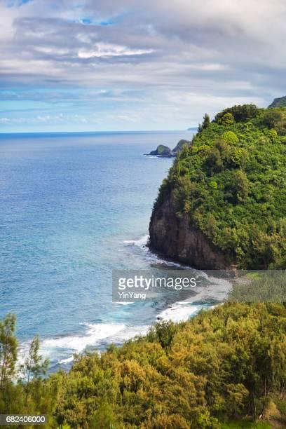 Kohala Forest Pololu Valley Lookout, Big Island, Hawaii