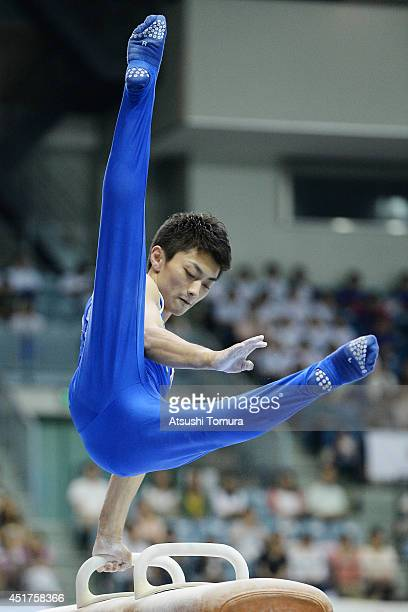Kohei Kameyama of Japan competes on the Pommel Horse during the 68th All Japan Gymnastics Apparatus Championships on July 6 2014 in Chiba Japan