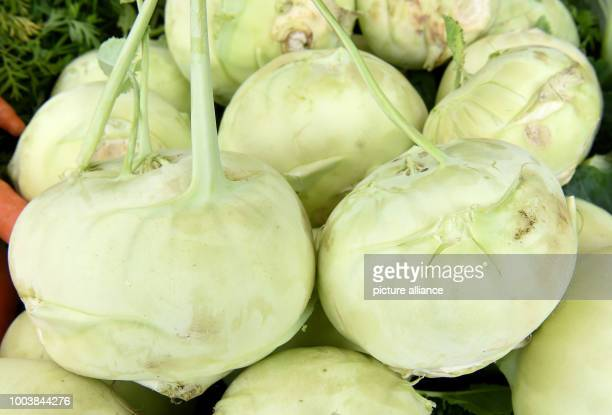 Kohlrabi can be seen at the weekly market in Langenhagen Germany 13 June 2017 Photo Holger Hollemann/dpa
