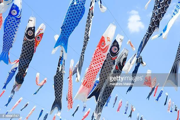 koinobori, carp streamers - 鯉のぼり ストックフォトと画像