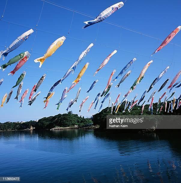 koinobori - 鯉のぼり ストックフォトと画像