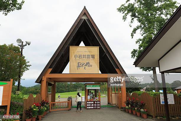 koiwai farm in japan - iwate prefecture stock photos and pictures