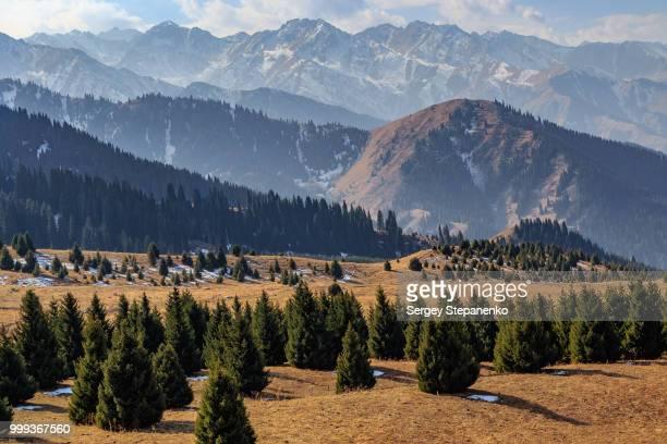 kok zhaileau plateau - カザフスタン ストックフォトと画像