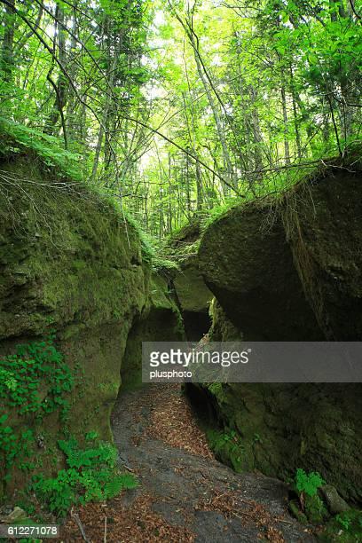 Koke no doumon (Moss canyon), Hokkaido Prefecture, Japan