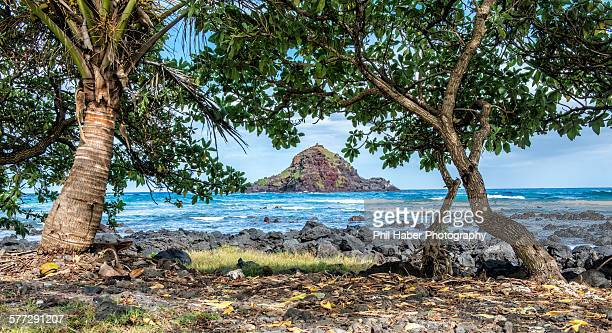 koki beach state park, maui - phil haber stock pictures, royalty-free photos & images