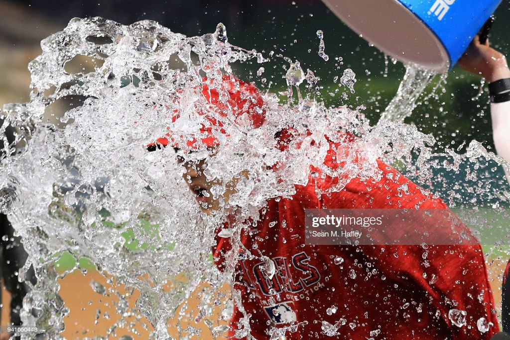 Kole Calhoun #56 dumps water on Shohei Ohtani #17 of the Los Angeles Angels of Anaheim after defeating the Cleveland Indians 13-2 in a game at Angel Stadium on April 3, 2018 in Anaheim, California.