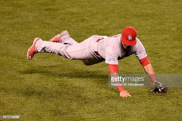 Kolten Wong of the St Louis Cardinals dives to field a ball hit by Travis Ishikawa of the San Francisco Giants in the fourth inning during Game Four...