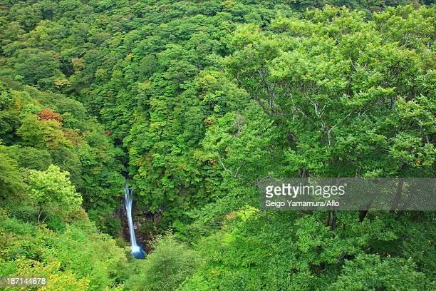 Komadome waterfall, Tochigi Prefecture