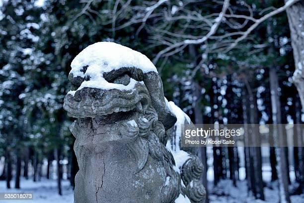 komainu and snow - 日本の神社 ストックフォトと画像