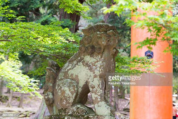 CONTENT] Komainu often called liondogs in English are statue pairs of lionlike creatures either guarding the entrance or the inner shrine of many...