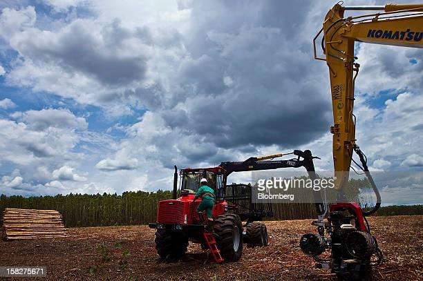 A Komatsu Ltd wood harvesting machine prepares to cut down 7 year old eucalyptuses on a farm leased by Eldorado Celulose e Papel SA in Andradina...