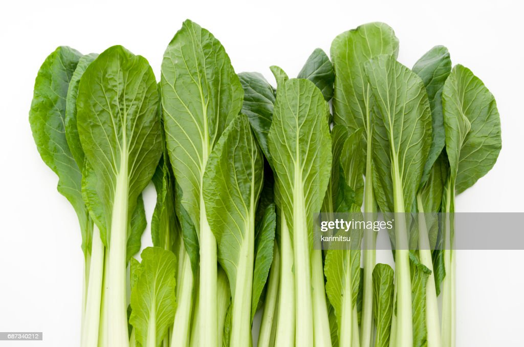 Komatsuna,Japanese Mustard Spinach : Stock Photo