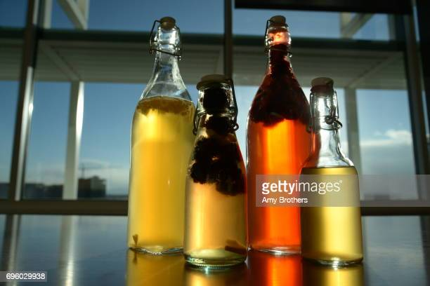 Kombucha infused with blackberries and ginger at the Denver Post on November 2 2016