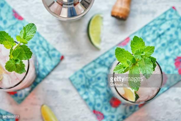 Kombucha Mojito with Fresh Mint and Ice