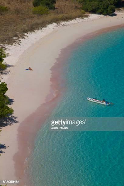 komodo archipelago, lesser sunda islands or nusa tenggara, indonesia, august 30, 2015 - komodo fotografías e imágenes de stock