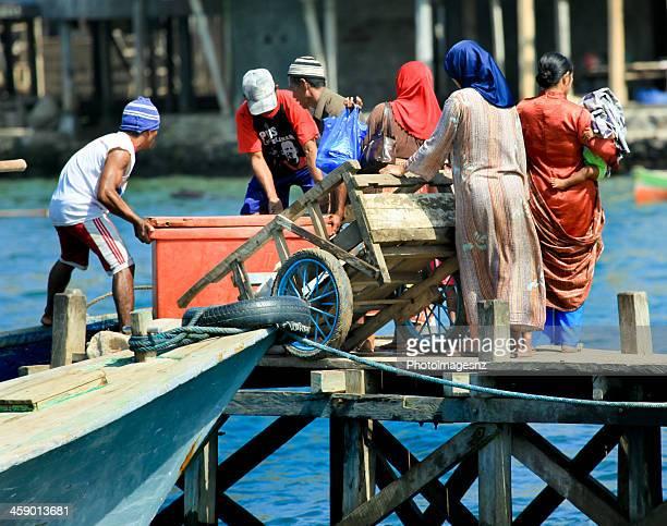 isla de komodo, indonesia - flores indonesia fotografías e imágenes de stock