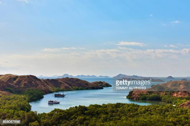 komodo national park - rinca island stock pictures, royalty-free photos & images