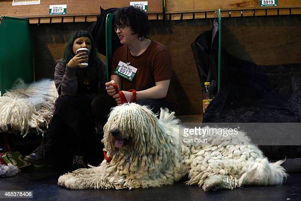Komondor rests on the second day of Crufts dog show at the National Exhibition Centre on March 6 2015 in Birmingham England First held in 1891 Crufts...