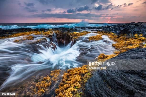 kona wells 02 - ハワイ島 ストックフォトと画像