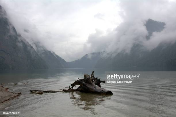 konigssee lake in the berchtesgaden national park - watzmann massif stock photos and pictures