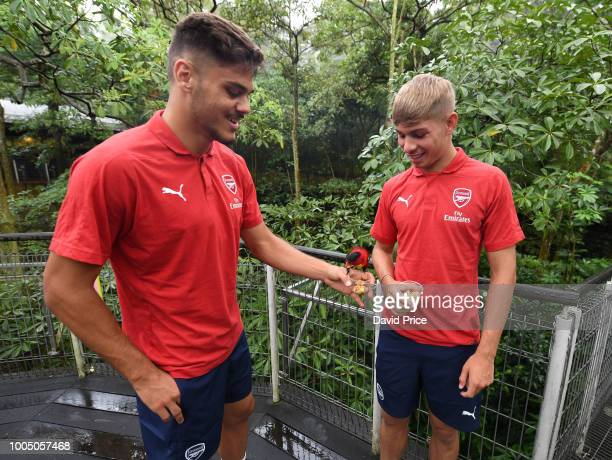 Konstantinos Mavropanos and Emile Smith Rowe of Arsenal during a visit to Jurong Bird Park on July 25 2018 in Singapore