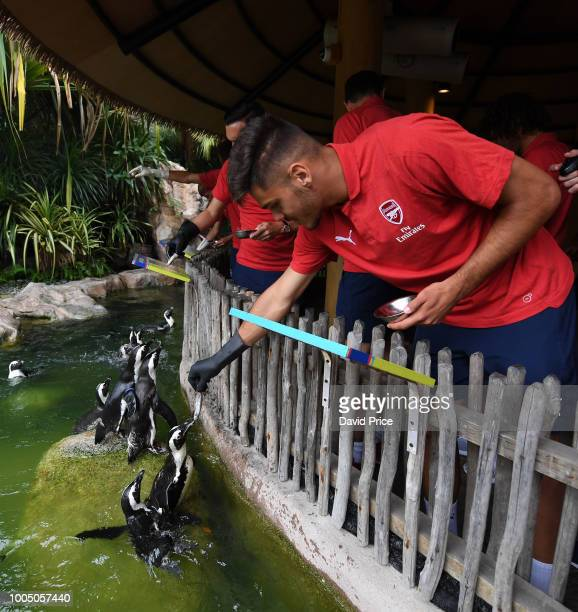 Konstantinos Mavropanos of Arsenal during a visit to Jurong Bird Park on July 25 2018 in Singapore