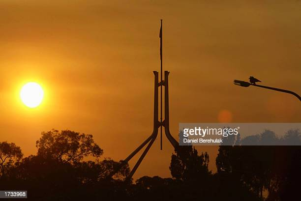 Kookaburra sits on a lamp post as the sun rises over Parliament House on January 20 2003 in Canberra Australia Four people were killed and 368 homes...