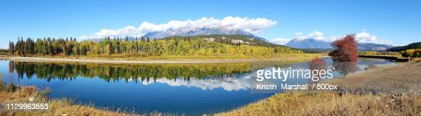 kootenay river in jaffray - riverbank stock pictures, royalty-free photos & images